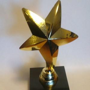 статуэтка наградная звезда,статуэтки с гравировкой,