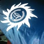 логотип на зонтах,печать на зонтиках,логотипы на зонтиках,логотип на зонт,Зонты с логотипом,